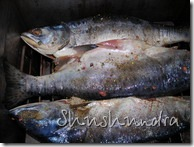 рецепт рыбы горячего