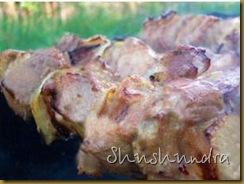 шашлык в кефире, шашлык из курицы, куриный шашлык, кефирный маринад