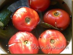 малосольные помидоры, помидоры рецепт, маринованные помидоры