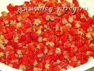 земляничное варенье, листья земляники, варенье из ягод, лесные ягоды, ягода земляника, обработка земляники, земляника в лесу, варенье из земляники