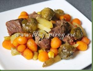 рагу с мясом в мультиварке, рецепты мультиварки Redmond rmc m4504, овощные рагу в мультиварке, как приготовить рагу в мультиварке, рагу в мультиварке редмонд